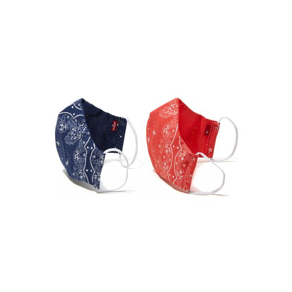 Reuseable Printed Face Mask (Pack of 2)